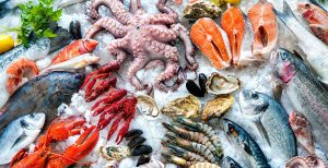 Vận chuyển hải sản tươi sống như thế nào